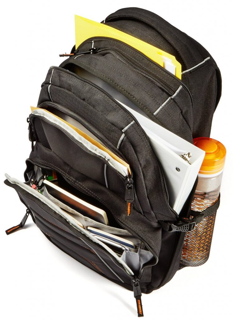 AmazonBasics Laptop Travel Bag