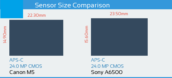 Canon M5 vs Sony A6500 Sensor Comparison
