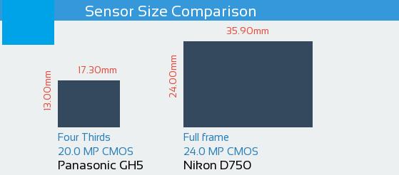 Panasonic Lumix DMC GH5 vs Nikon D750 Sensor Comparison