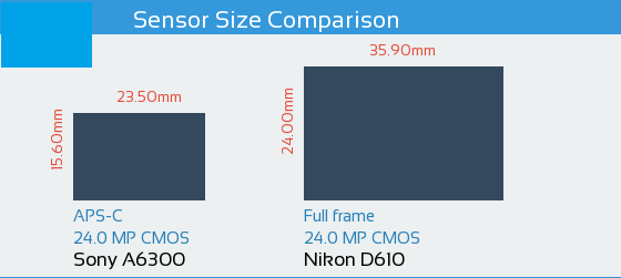 Sony A6300 vs Nikon D610: Sensor Comparison