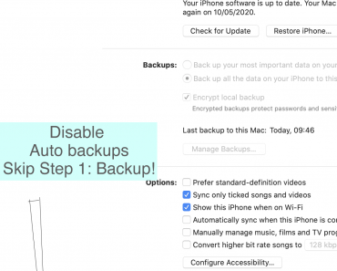 disable step 1 backup on sync apple